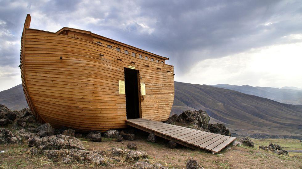 Arche Noah an Land