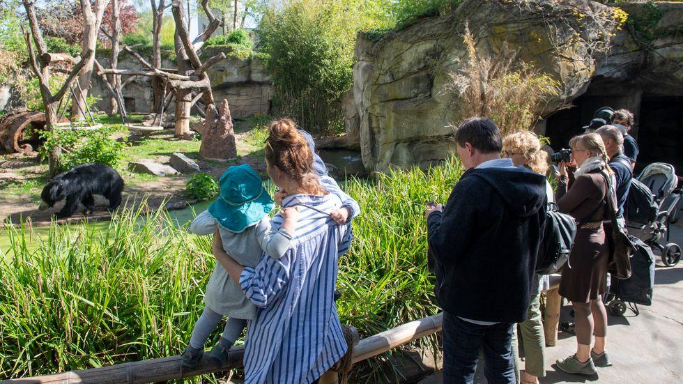 Besucher im Zoo Leipzig
